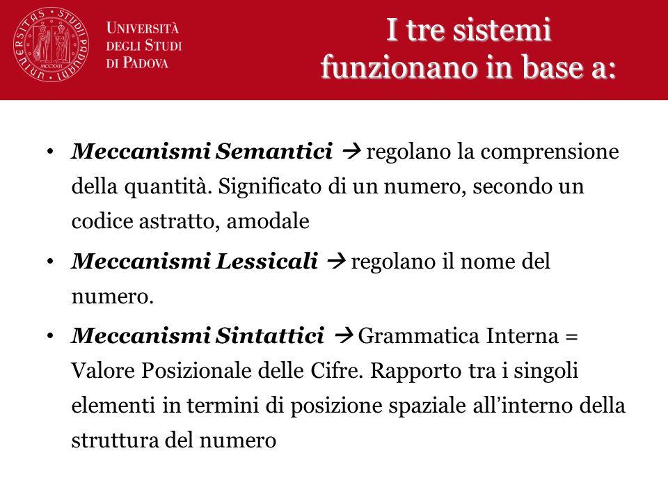 I tre sistemi funzionano in base a: Meccanismi Semantici regolano la comprensione della quantità. Significato di un numero, secondo un codice astratto