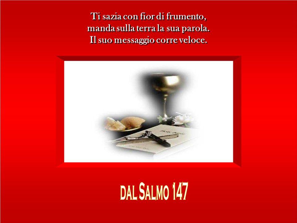 elaborazione: Marcello Abbondi Canto: Sanctus V modo Schola Gregoriana Mediolanensis Canto: Sanctus V modo Schola Gregoriana Mediolanensis