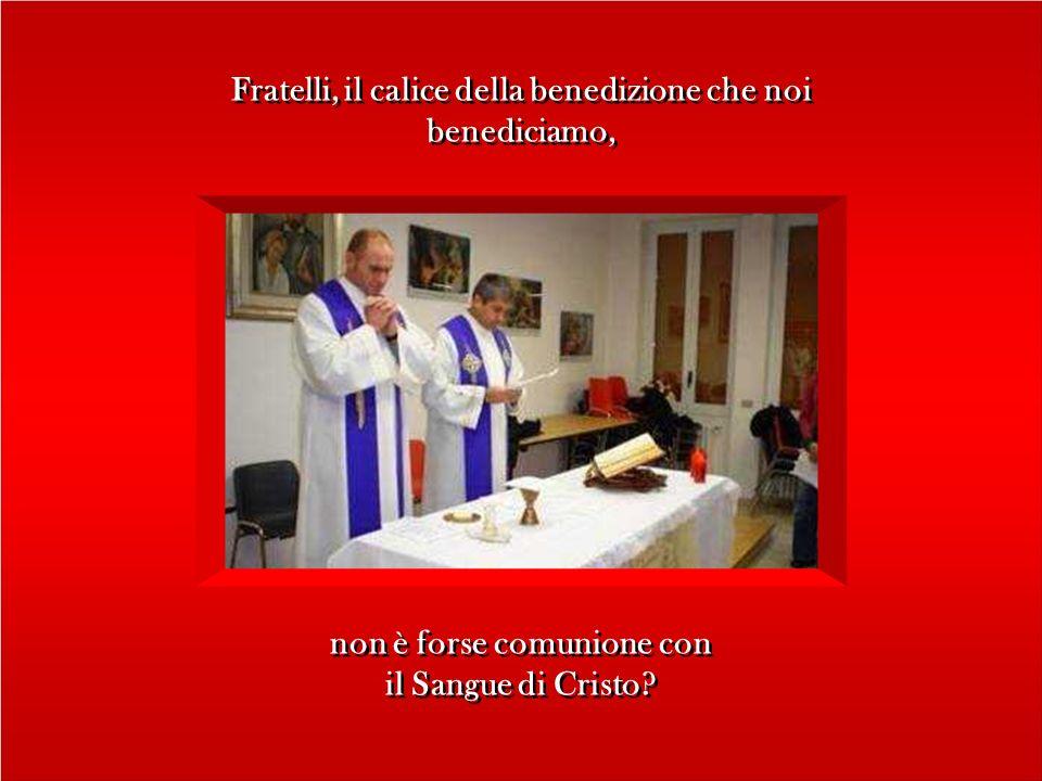 Fratelli, il calice della benedizione che noi benediciamo, Fratelli, il calice della benedizione che noi benediciamo, non è forse comunione con il Sangue di Cristo.