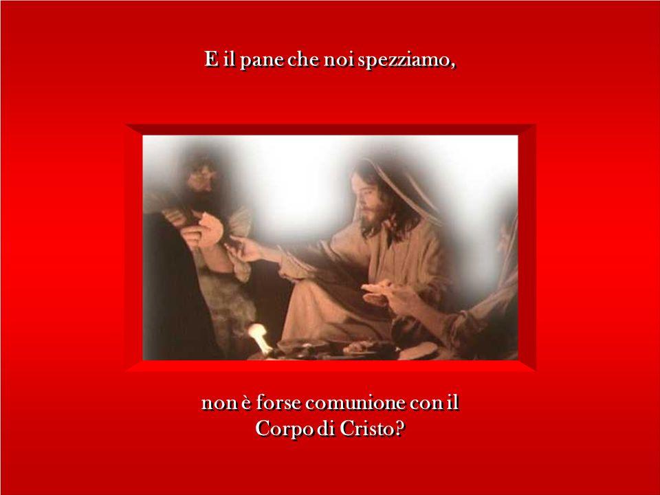 E il pane che noi spezziamo, non è forse comunione con il Corpo di Cristo.