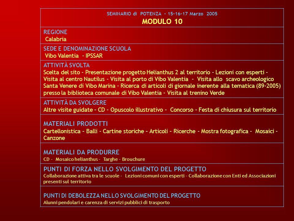 SEMINARIO di POTENZA - 15-16-17 Marzo 2005 MODULO 10 REGIONE Calabria SEDE E DENOMINAZIONE SCUOLA Vibo Valentia - IPSSAR ATTIVITÀ SVOLTA Scelta del si