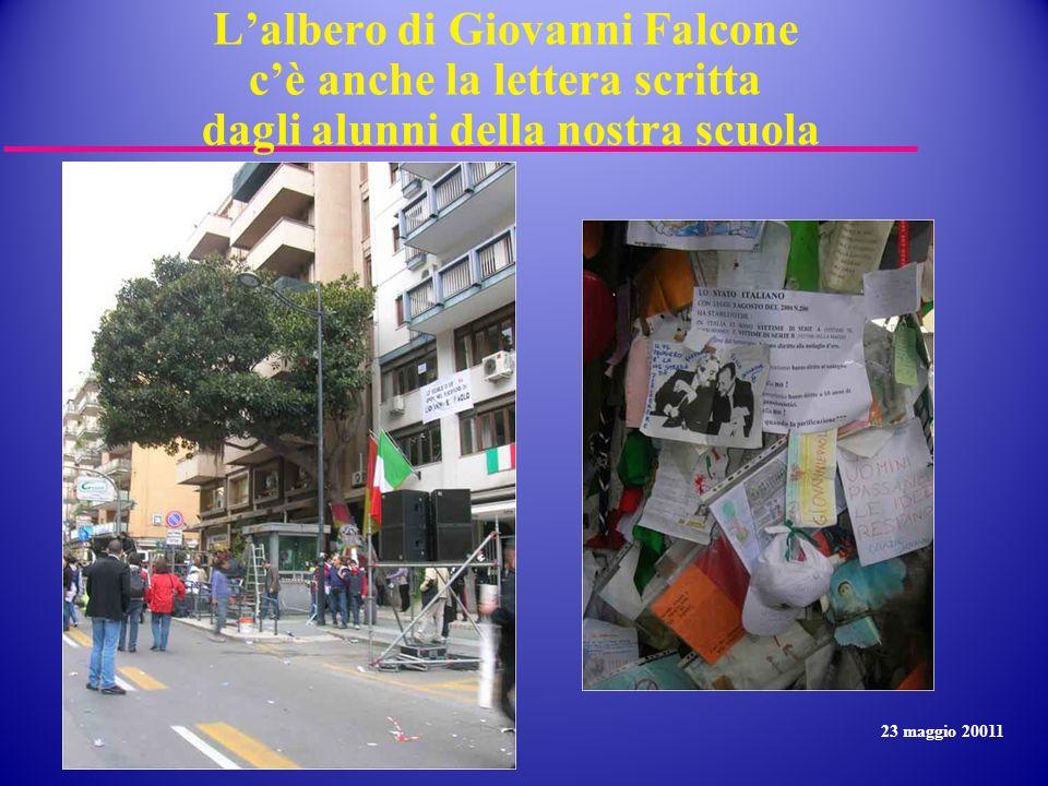 Lalbero di Giovanni Falcone cè anche la lettera scritta dagli alunni della nostra scuola 23 maggio 20011