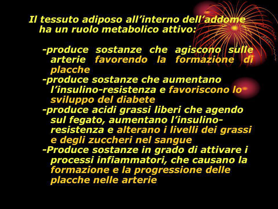 Il tessuto adiposo allinterno delladdome ha un ruolo metabolico attivo: -produce sostanze che agiscono sulle arterie favorendo la formazione di placche -produce sostanze che aumentano linsulino-resistenza e favoriscono lo sviluppo del diabete -produce acidi grassi liberi che agendo sul fegato, aumentano linsulino- resistenza e alterano i livelli dei grassi e degli zuccheri nel sangue -Produce sostanze in grado di attivare i processi infiammatori, che causano la formazione e la progressione delle placche nelle arterie