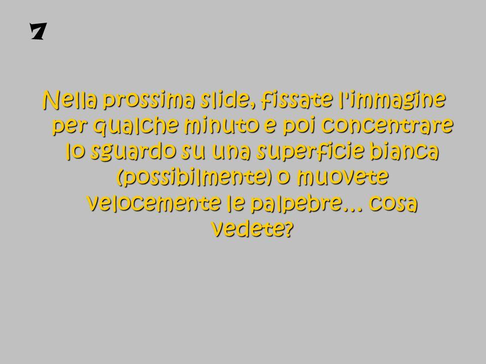 7 Nella prossima slide, fissate l'immagine per qualche minuto e poi concentrare lo sguardo su una superficie bianca (possibilmente) o muovete veloceme