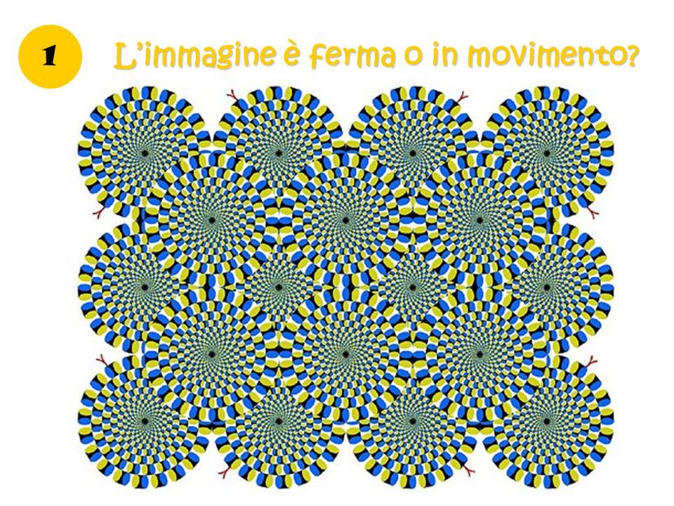 1 Limmagine è ferma o in movimento?