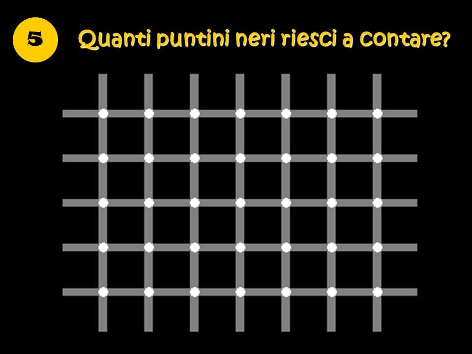 5 Quanti puntini neri riesci a contare?