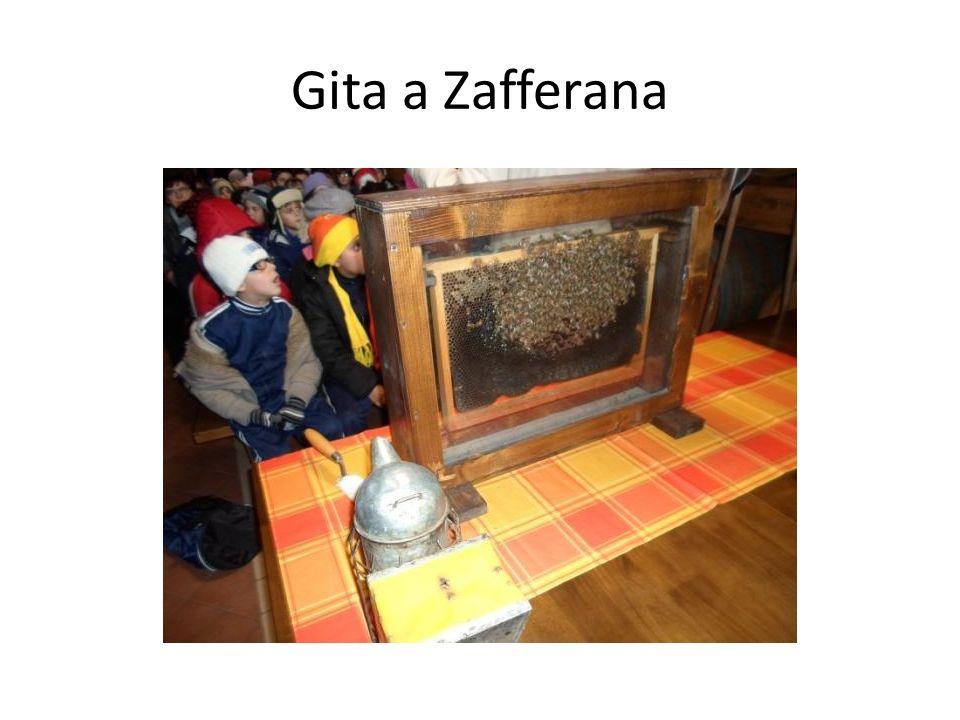 Gita a Zafferana