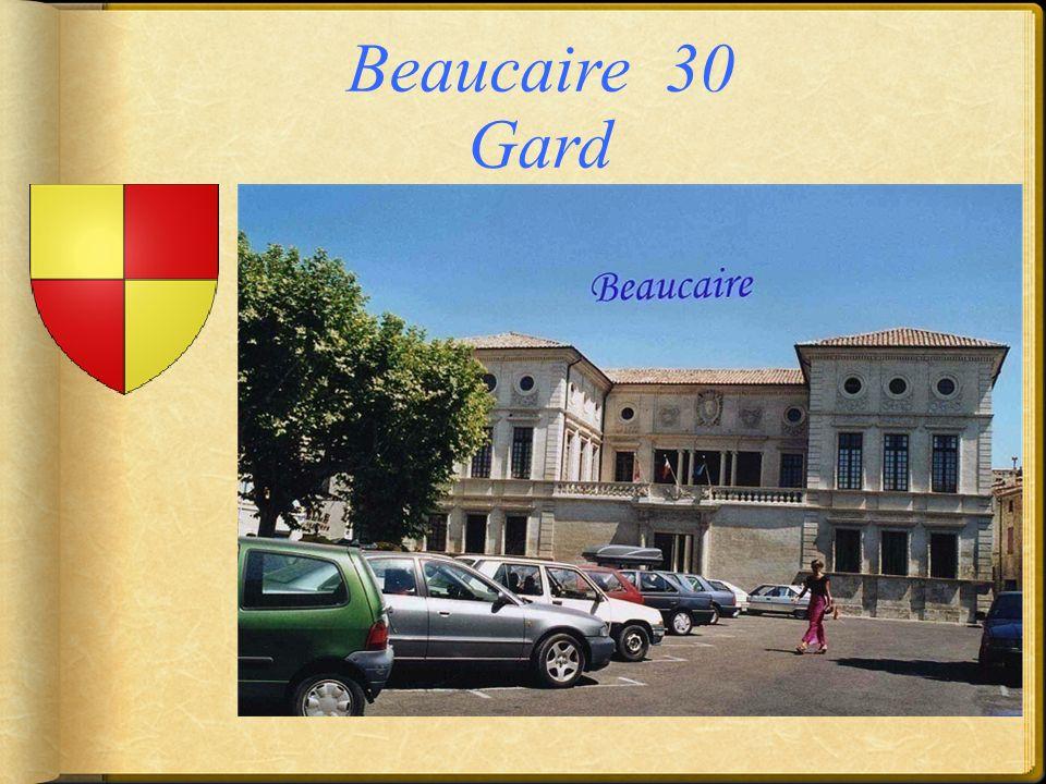 Beaucaire 30 Gard