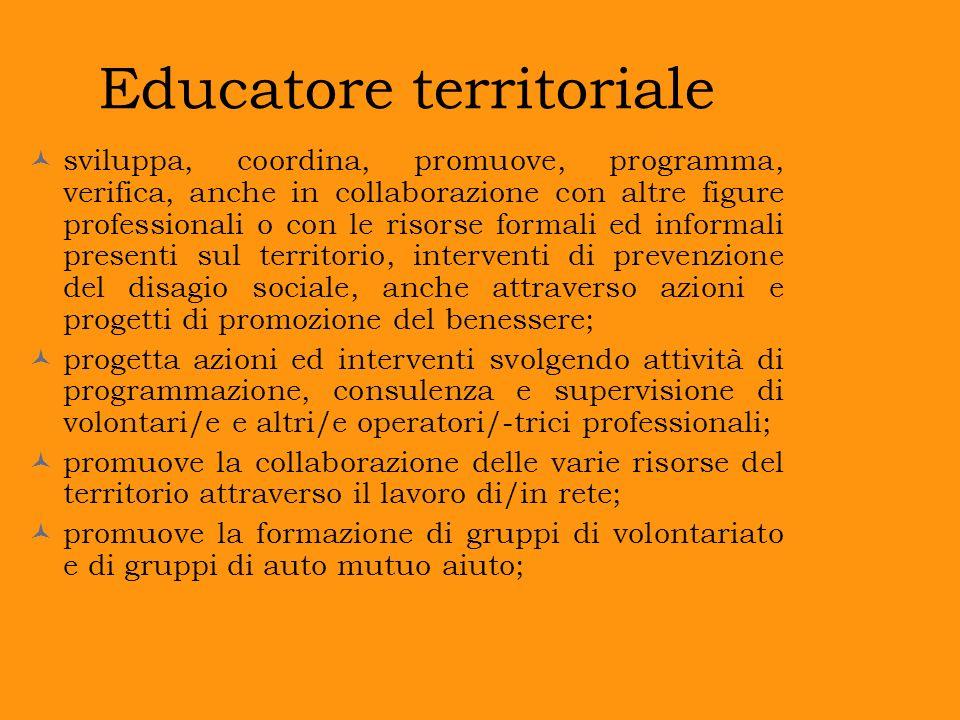 Educatore territoriale sviluppa, coordina, promuove, programma, verifica, anche in collaborazione con altre figure professionali o con le risorse form
