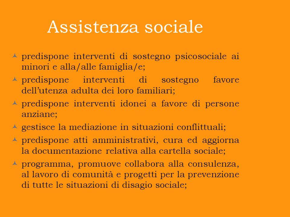 Assistenza sociale predispone interventi di sostegno psicosociale ai minori e alla/alle famiglia/e; predispone interventi di sostegno favore dellutenz