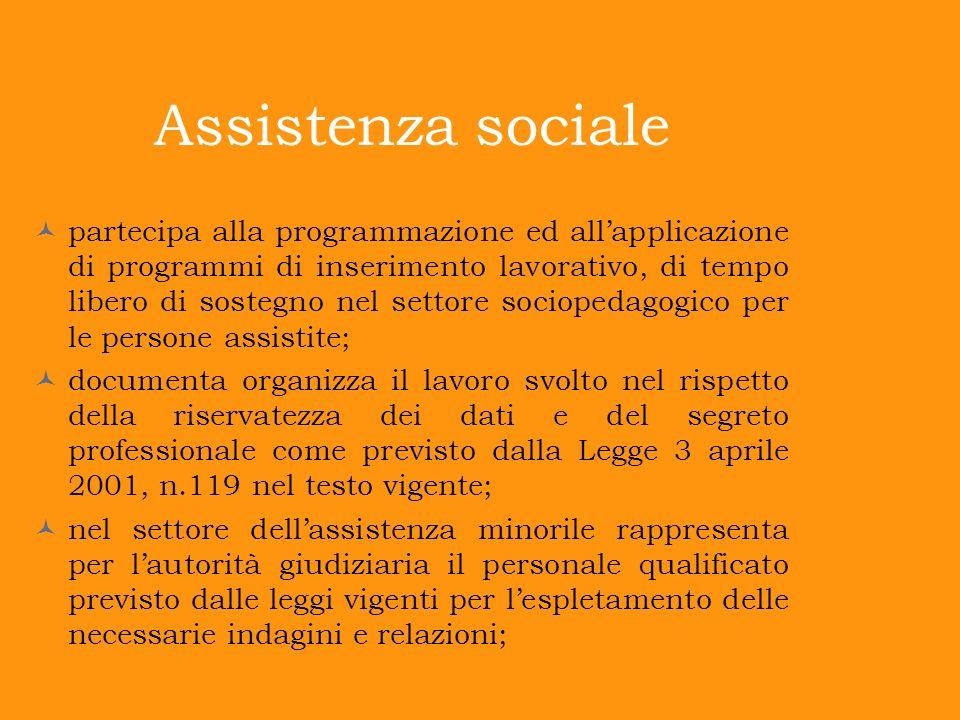 Assistenza sociale partecipa alla programmazione ed allapplicazione di programmi di inserimento lavorativo, di tempo libero di sostegno nel settore so
