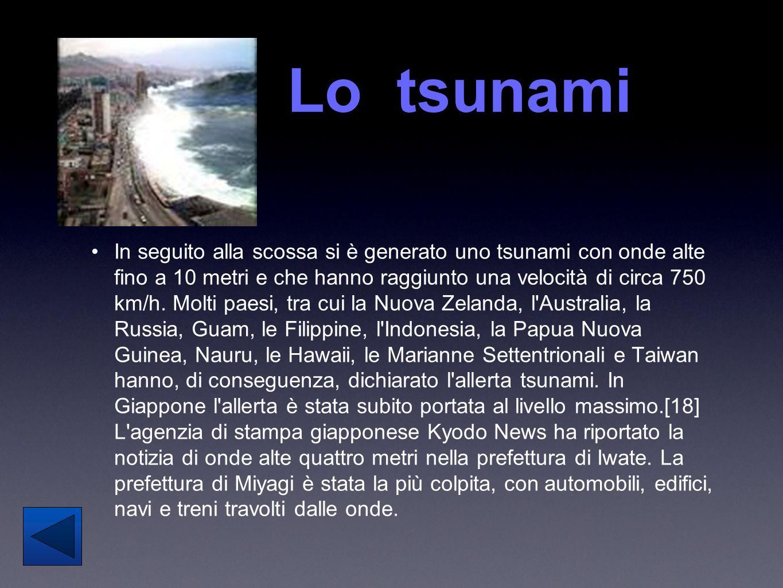 Lo tsunami In seguito alla scossa si è generato uno tsunami con onde alte fino a 10 metri e che hanno raggiunto una velocità di circa 750 km/h. Molti