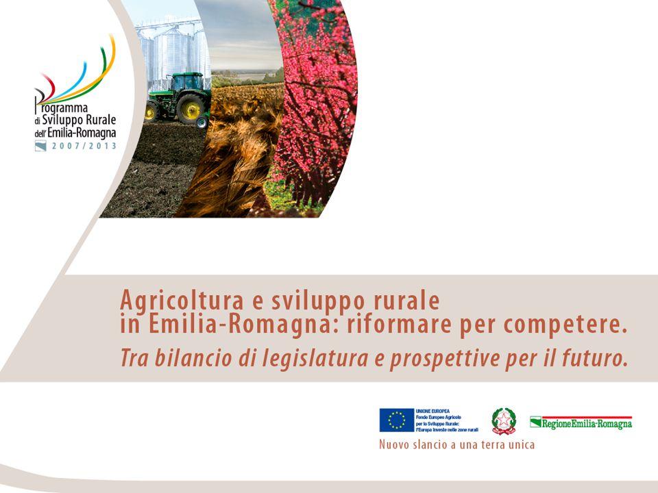 Agricoltura organizzata, alcuni casi di successo Intervento di Kees de Roest, CRPA – Reggio Emilia Il caso dellagricoltura olandese