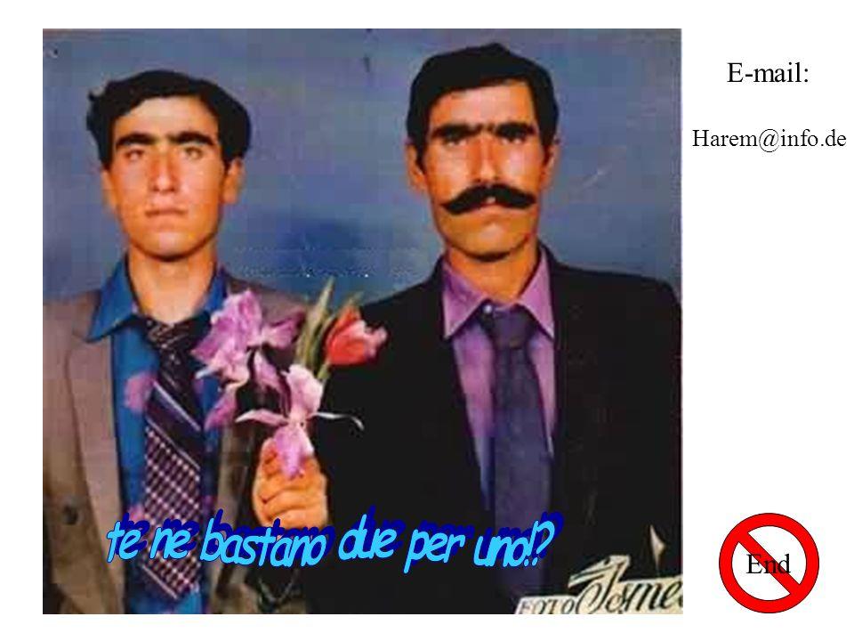 E-mail: Harem@info.de End