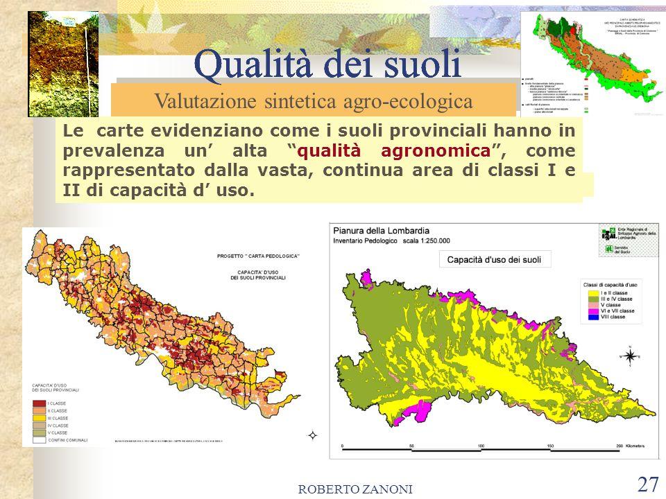 ROBERTO ZANONI 27 Qualità dei suoli Le carte evidenziano come i suoli provinciali hanno in prevalenza un alta qualità agronomica, come rappresentato d
