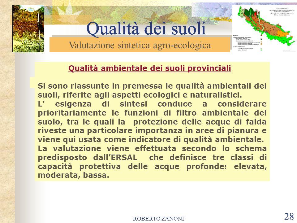 ROBERTO ZANONI 28 Qualità dei suoli Qualità ambientale dei suoli provinciali Si sono riassunte in premessa le qualità ambientali dei suoli, riferite a