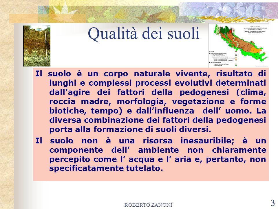 ROBERTO ZANONI 3 Qualità dei suoli Il suolo è un corpo naturale vivente, risultato di lunghi e complessi processi evolutivi determinati dallagire dei