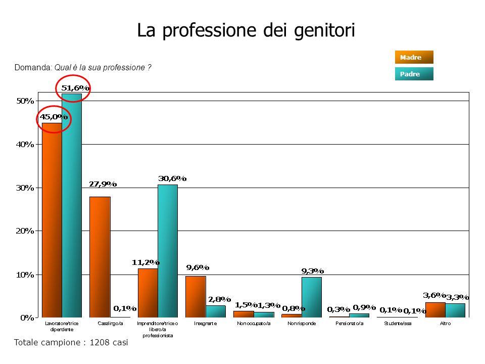 La professione dei genitori Totale campione : 1208 casi Domanda: Qual è la sua professione .