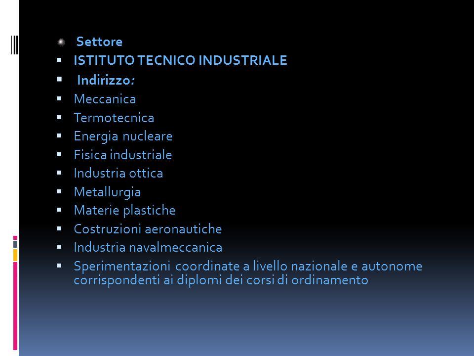 Settore Settore ISTITUTO TECNICO INDUSTRIALE ISTITUTO TECNICO INDUSTRIALE : Indirizzo: Meccanica Termotecnica Energia nucleare Fisica industriale Indu
