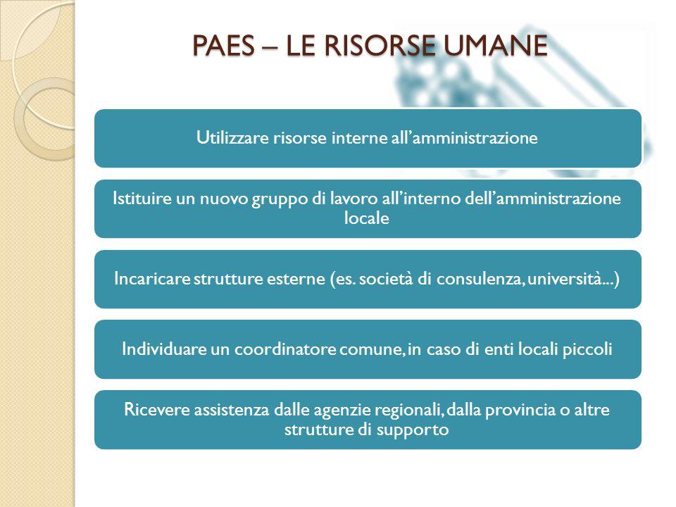 PAES – LE RISORSE UMANE Utilizzare risorse interne allamministrazione Istituire un nuovo gruppo di lavoro allinterno dellamministrazione locale Incaricare strutture esterne (es.
