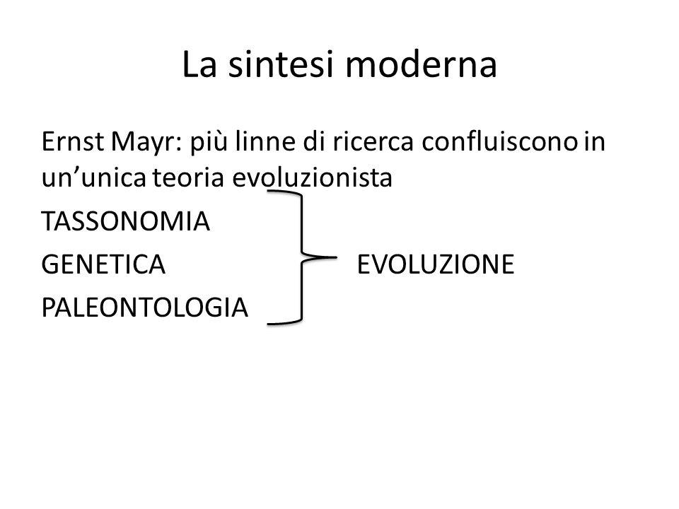 La sintesi moderna Ernst Mayr: più linne di ricerca confluiscono in ununica teoria evoluzionista TASSONOMIA GENETICA EVOLUZIONE PALEONTOLOGIA