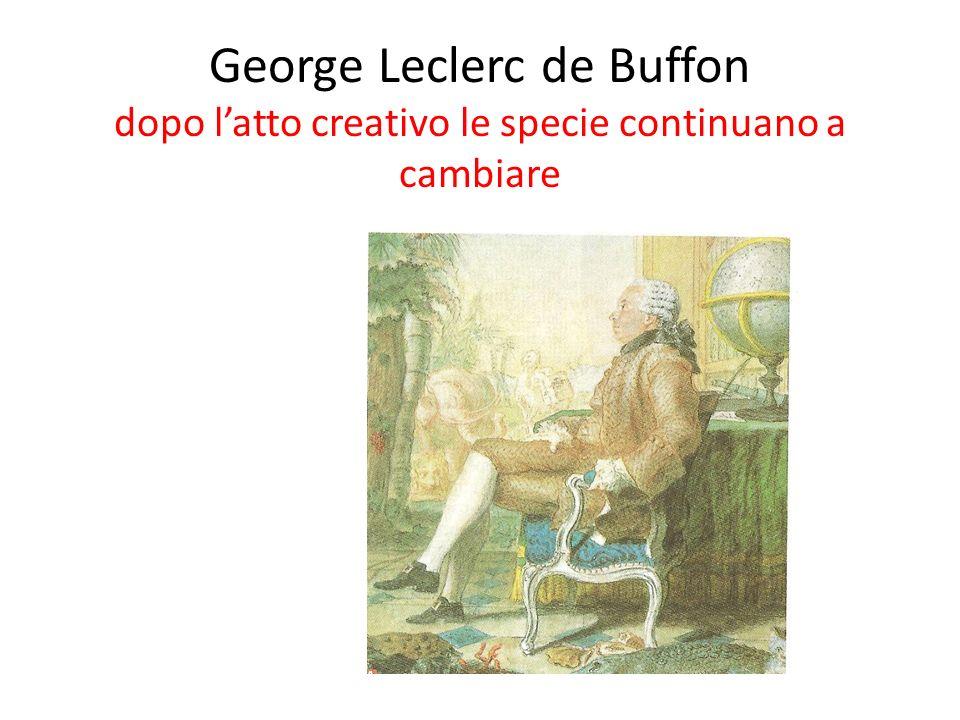 George Leclerc de Buffon dopo latto creativo le specie continuano a cambiare