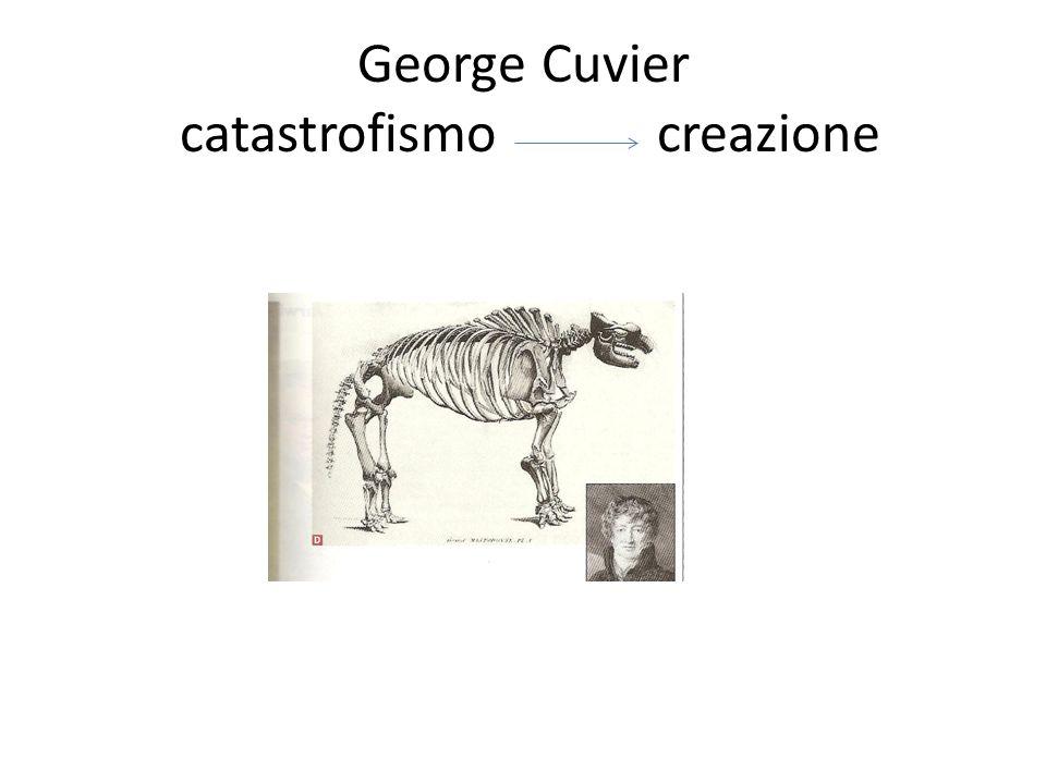 George Cuvier catastrofismo creazione