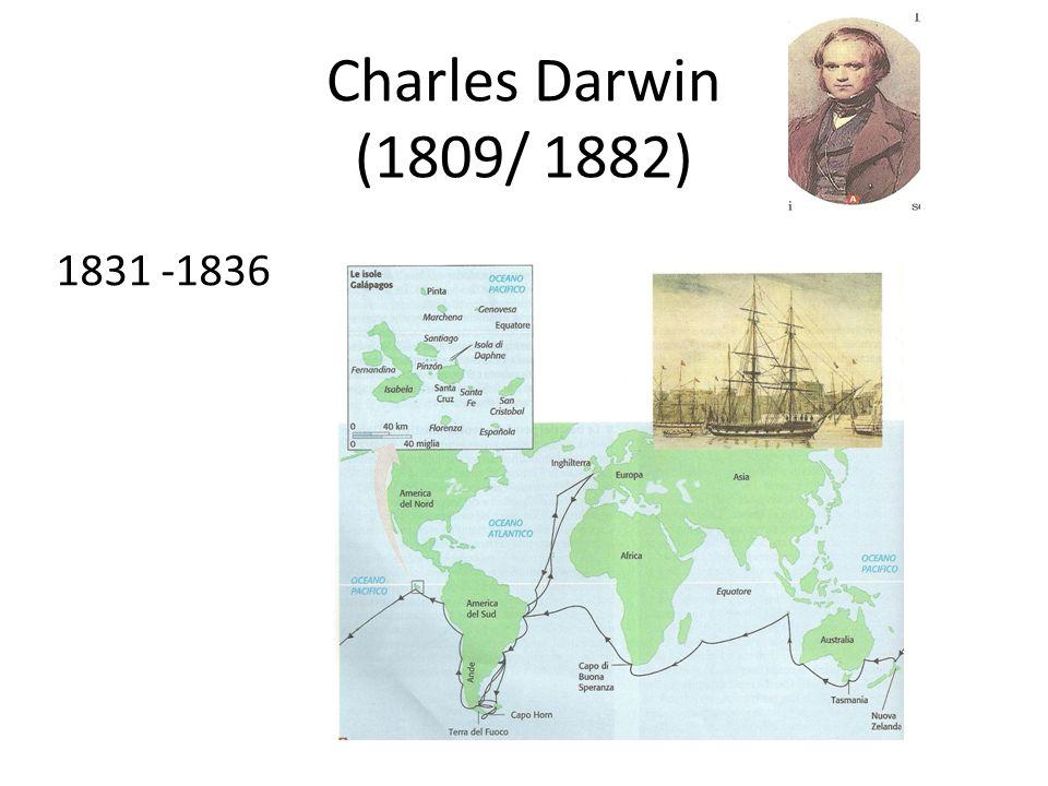 Charles Darwin (1809/ 1882) 1831 -1836