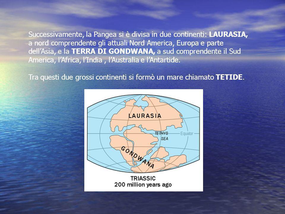 Successivamente, la Pangea si è divisa in due continenti: LAURASIA, a nord comprendente gli attuali Nord America, Europa e parte dellAsia, e la TERRA