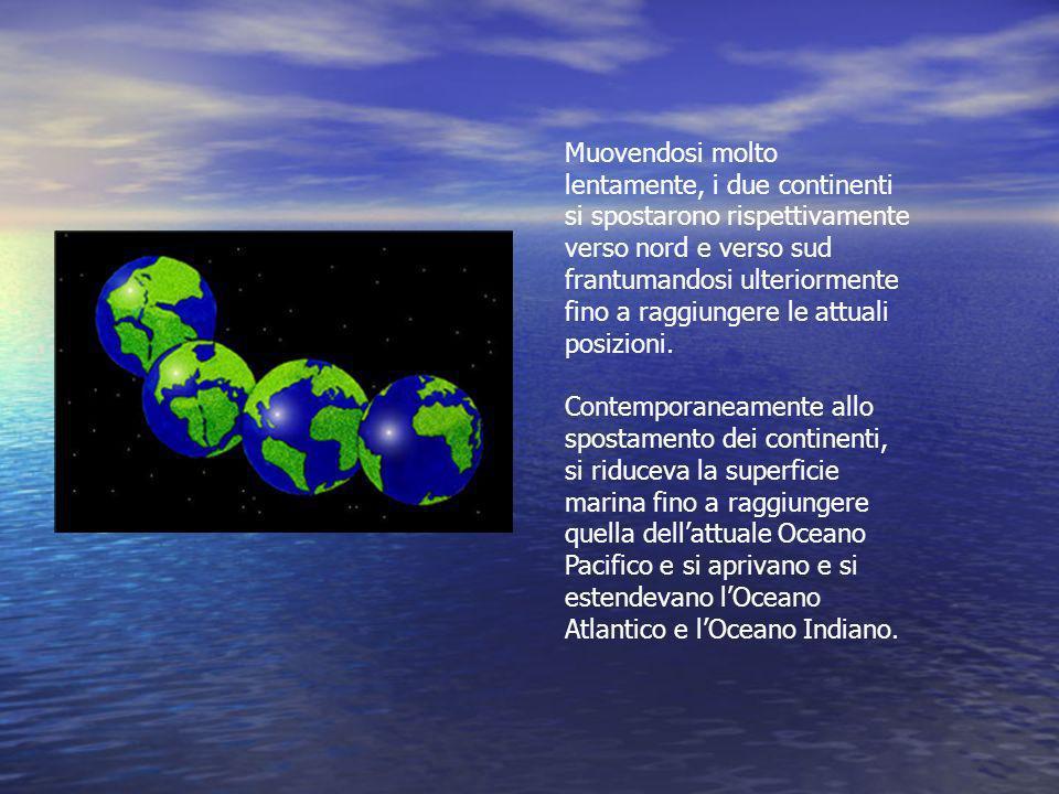 Muovendosi molto lentamente, i due continenti si spostarono rispettivamente verso nord e verso sud frantumandosi ulteriormente fino a raggiungere le a