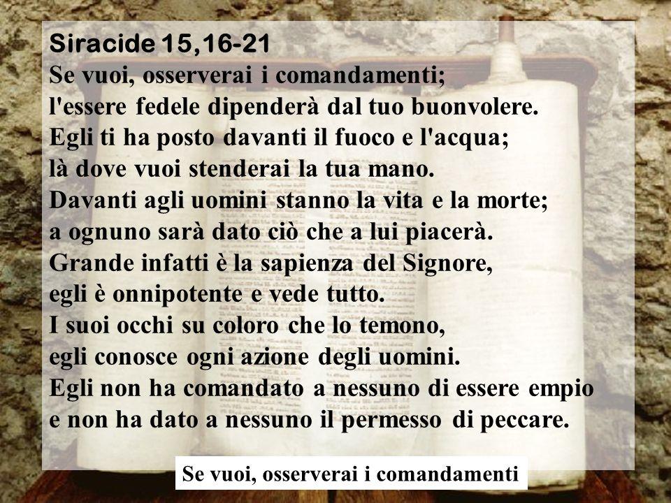 Siracide 15,16-21 Se vuoi, osserverai i comandamenti; l essere fedele dipenderà dal tuo buonvolere.