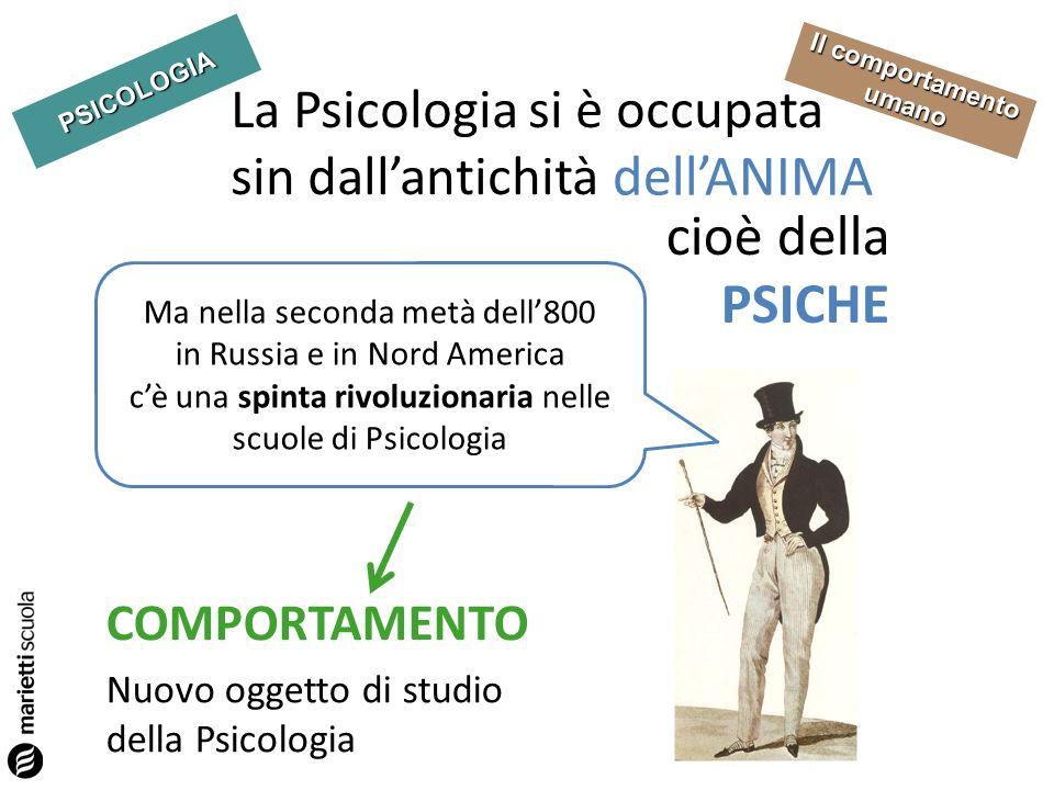 PSICOLOGIA Il comportamento umano La Psicologia si è occupata sin dallantichità dellANIMA COMPORTAMENTO cioè della PSICHE Ma nella seconda metà dell80