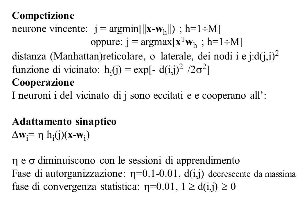 Competizione neurone vincente: j = argmin[||x-w h ||) ; h=1 M] oppure: j = argmax[x T w h ; h=1 M] distanza (Manhattan)reticolare, o laterale, dei nodi i e j:d(j,i) 2 funzione di vicinato: h i (j) = exp[- d(i,j) 2 /2 2 ] Cooperazione I neuroni i del vicinato di j sono eccitati e e cooperano all: Adattamento sinaptico w i = h i (j)(x-w i ) e diminuiscono con le sessioni di apprendimento Fase di autorganizzazione: =0.1-0.01, d(i,j) decrescente da massima fase di convergenza statistica: =0.01, 1 d(i,j) 0