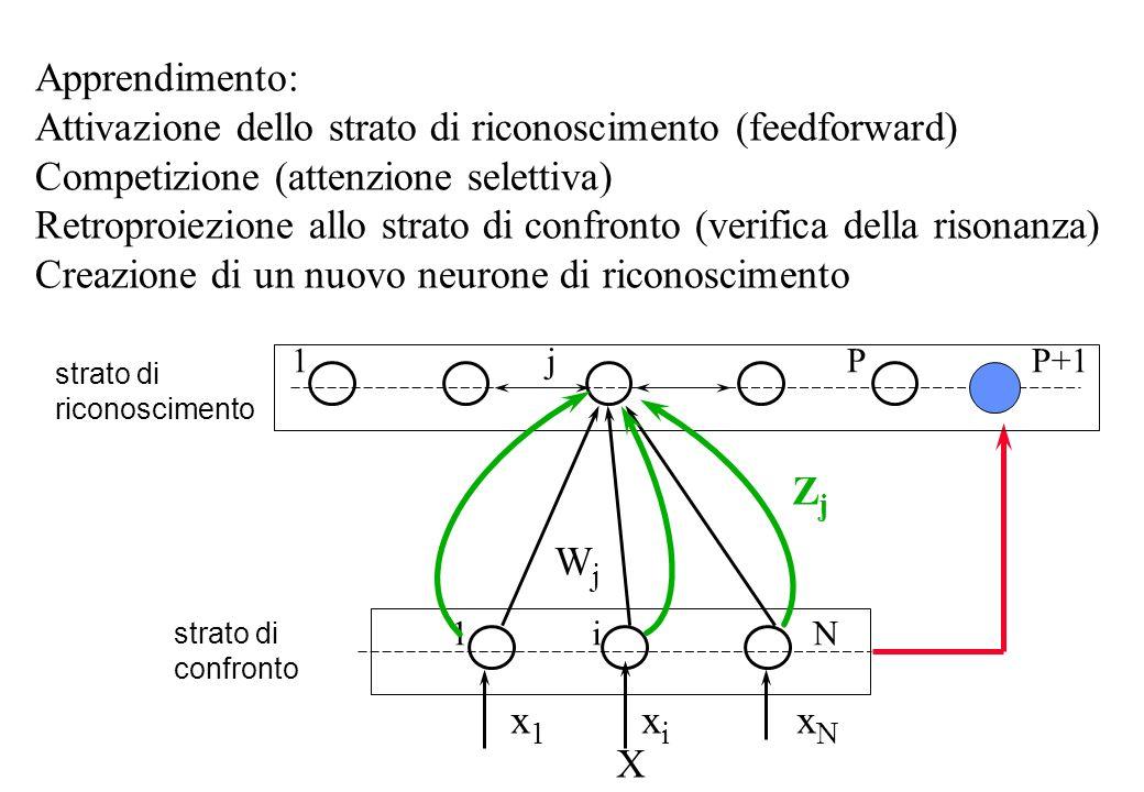Apprendimento: Attivazione dello strato di riconoscimento (feedforward) Competizione (attenzione selettiva) Retroproiezione allo strato di confronto (verifica della risonanza) Creazione di un nuovo neurone di riconoscimento strato di riconoscimento strato di confronto 1 j P P+1 1 i N WjWj x 1 x i x N ZjZj X