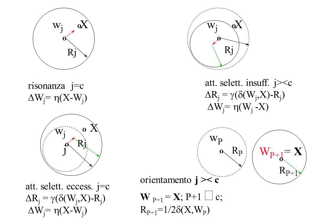 o wjwj o W P+1 = X o Rj X risonanza j=c W j = (X-W j ) att. selett. insuff. j><c R j = ( (W j,X)-R j ) W j = (W j -X) wjwj o o Rj X att. selett. ecces