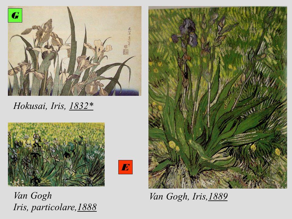 Van Gogh Iris, particolare,1888 Van Gogh, Iris,1889 E G Hokusai, Iris, 1832* G