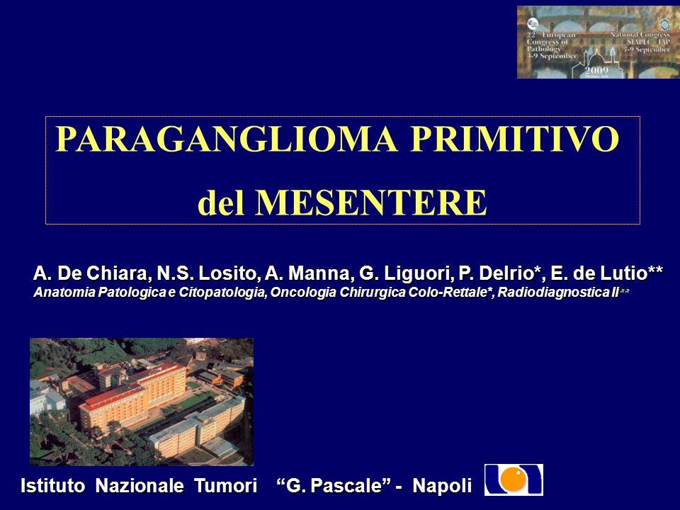 PARAGANGLIOMA PRIMITIVO del MESENTERE A. De Chiara, N.S. Losito, A. Manna, G. Liguori, P. Delrio*, E. de Lutio** Anatomia Patologica e Citopatologia,