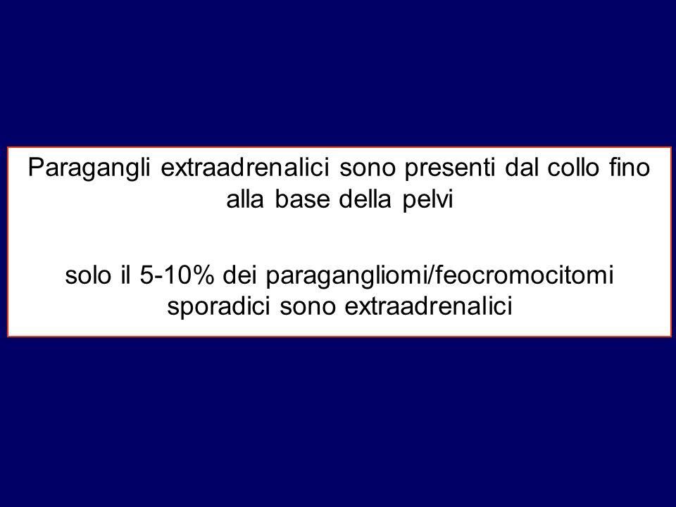 Paragangli extraadrenalici sono presenti dal collo fino alla base della pelvi solo il 5-10% dei paragangliomi/feocromocitomi sporadici sono extraadren