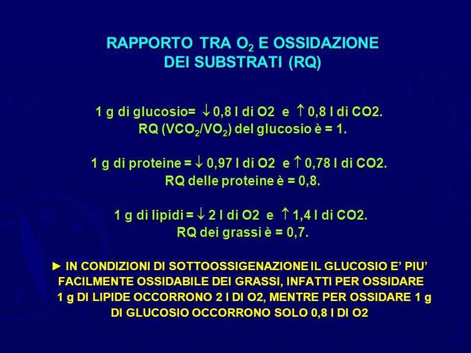 RAPPORTO TRA O 2 E OSSIDAZIONE DEI SUBSTRATI (RQ) 1 g di glucosio= 0,8 l di O2 e 0,8 l di CO2. RQ (VCO 2 /VO 2 ) del glucosio è = 1. RQ (VCO 2 /VO 2 )