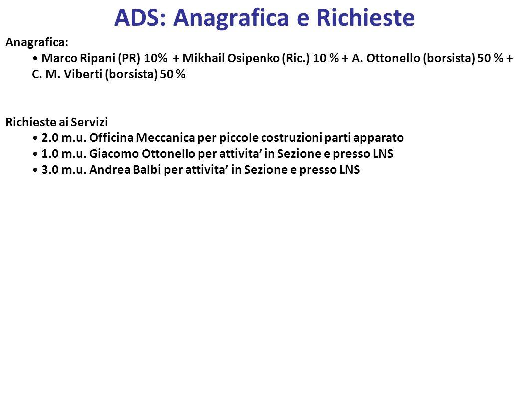 Anagrafica: Marco Ripani (PR) 10% + Mikhail Osipenko (Ric.) 10 % + A. Ottonello (borsista) 50 % + C. M. Viberti (borsista) 50 % Richieste ai Servizi 2