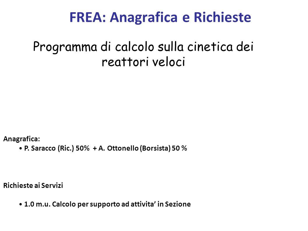Anagrafica: P. Saracco (Ric.) 50% + A. Ottonello (Borsista) 50 % Richieste ai Servizi 1.0 m.u. Calcolo per supporto ad attivita in Sezione FREA: Anagr