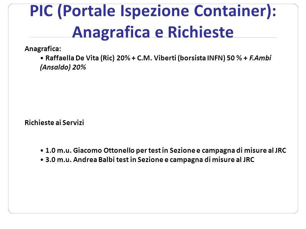 PIC (Portale Ispezione Container): Anagrafica e Richieste Anagrafica: Raffaella De Vita (Ric) 20% + C.M. Viberti (borsista INFN) 50 % + F.Ambi (Ansald