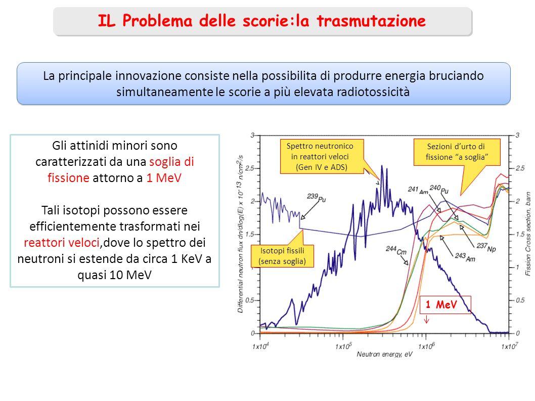Bersaglio 238 U per protofissione Acceleratore Lineare Per Ioni ALPI Ioni Radioattivi (SPES, Fisica Nucleare, Adroterapia ?) BNCT Boron Neutron Capture Therapy Scienza dei Materiali n veloci n termici Possibile schema di unInfrastruttura INFN-ANN per Formazione e Ricerca ai LNL Ciclotrone per protoni, 70 MeV, 0.5 mA (LNL) Energia Nucleare, 200kW Su Berillio Un simile apparato sarebbe in grado, tra laltro, di bruciare circa un milligrammo per cm 3 al mese per mA di protoni di un attinide quale 237 Np o isotopi dellAmericio o del Curio