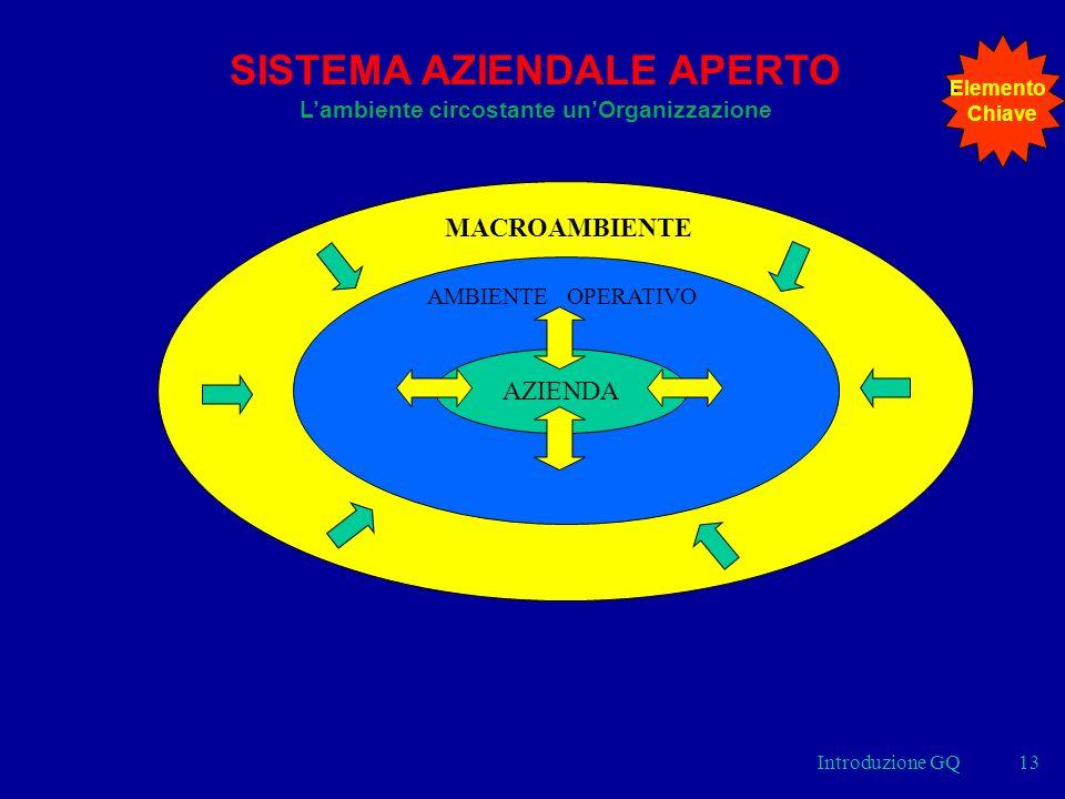 Introduzione GQ13 AZIENDA AMBIENTE OPERATIVO MACROAMBIENTE SISTEMA AZIENDALE APERTO Lambiente circostante unOrganizzazione Elemento Chiave