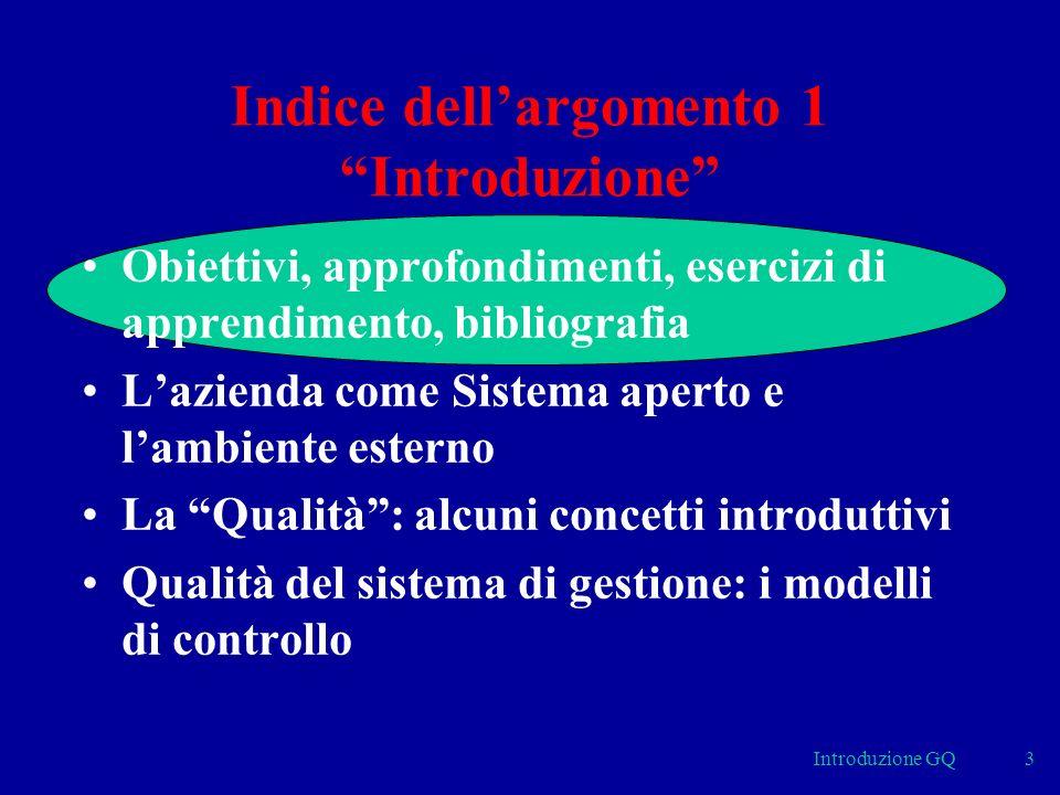 Introduzione GQ3 Indice dellargomento 1 Introduzione Obiettivi, approfondimenti, esercizi di apprendimento, bibliografia Lazienda come Sistema aperto