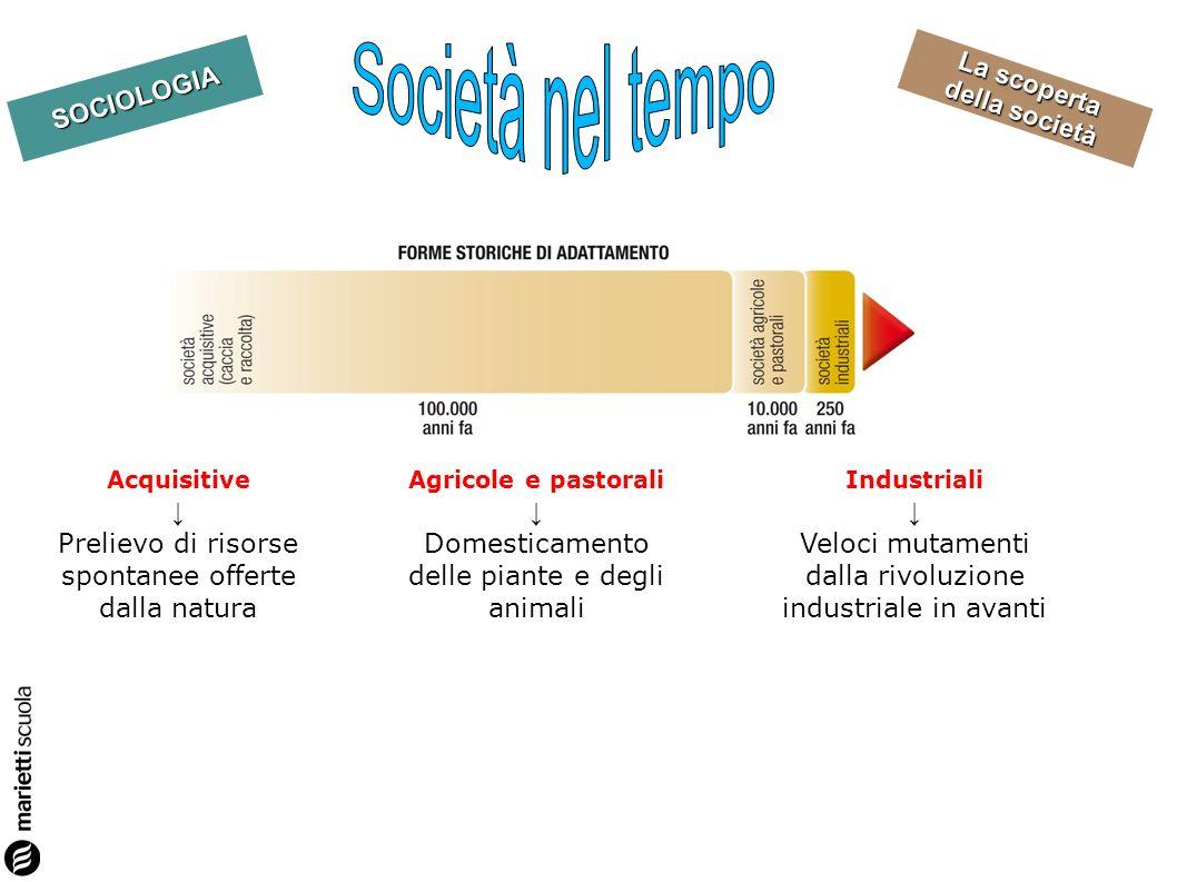 La scoperta della società SOCIOLOGIA Acquisitive Prelievo di risorse spontanee offerte dalla natura Agricole e pastorali Domesticamento delle piante e