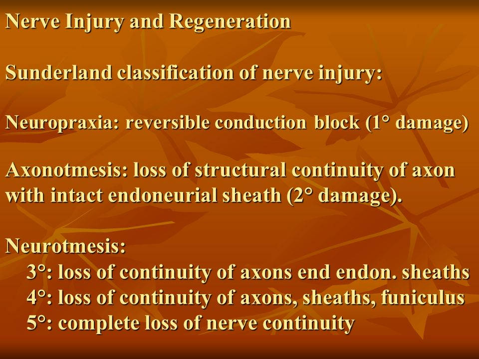 Nerve Injury and Regeneration Sunderland classification of nerve injury: Neuropraxia: reversible conduction block (1° damage) Axonotmesis: loss of str