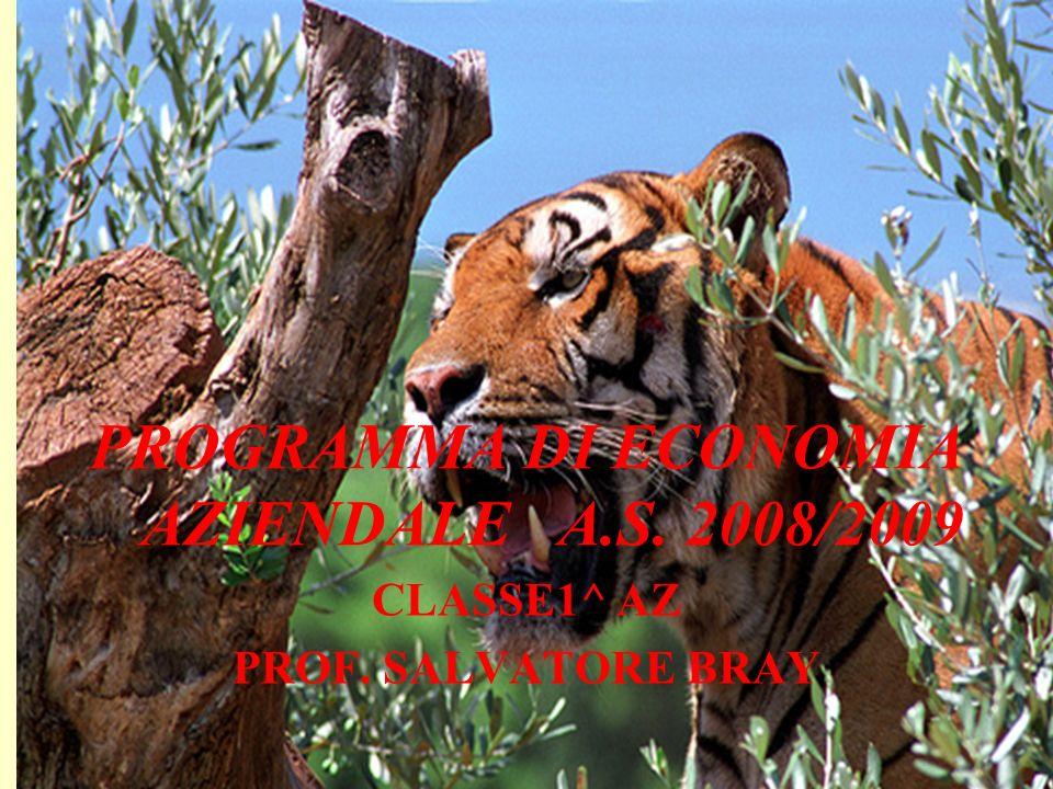 PROGRAMMA DI ECONOMIA AZIENDALE A.S. 2008/2009 CLASSE1^ AZ PROF. SALVATORE BRAY