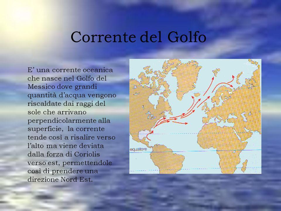 Corrente del Golfo E una corrente oceanica che nasce nel Golfo del Messico dove grandi quantità dacqua vengono riscaldate dai raggi del sole che arriv