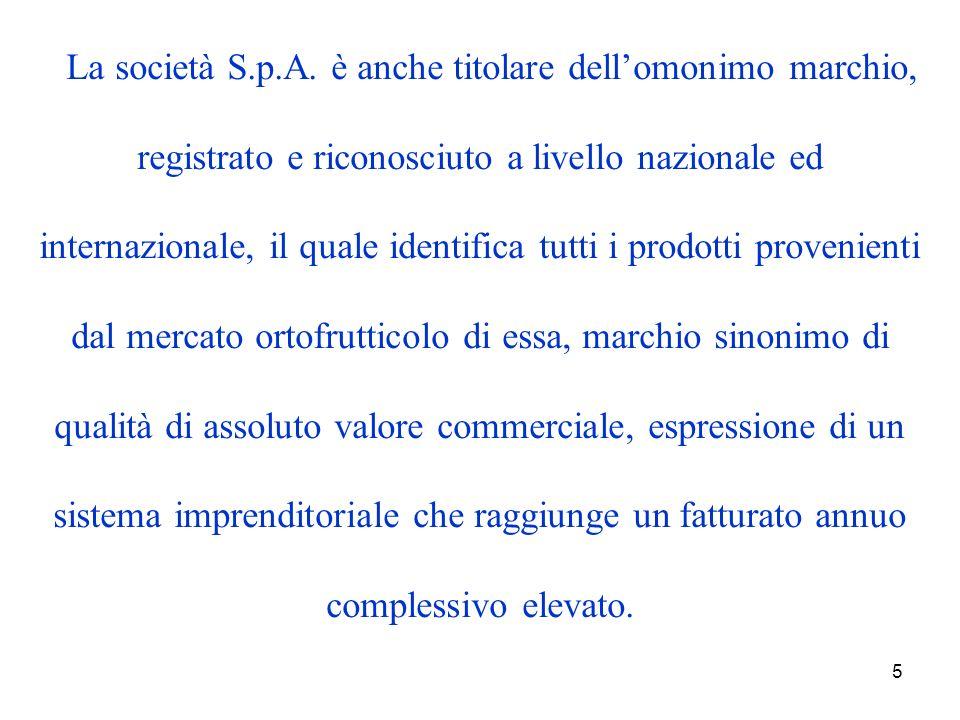 5 La società S.p.A.